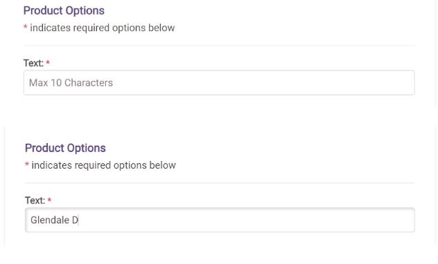 Product Option Screen Shot