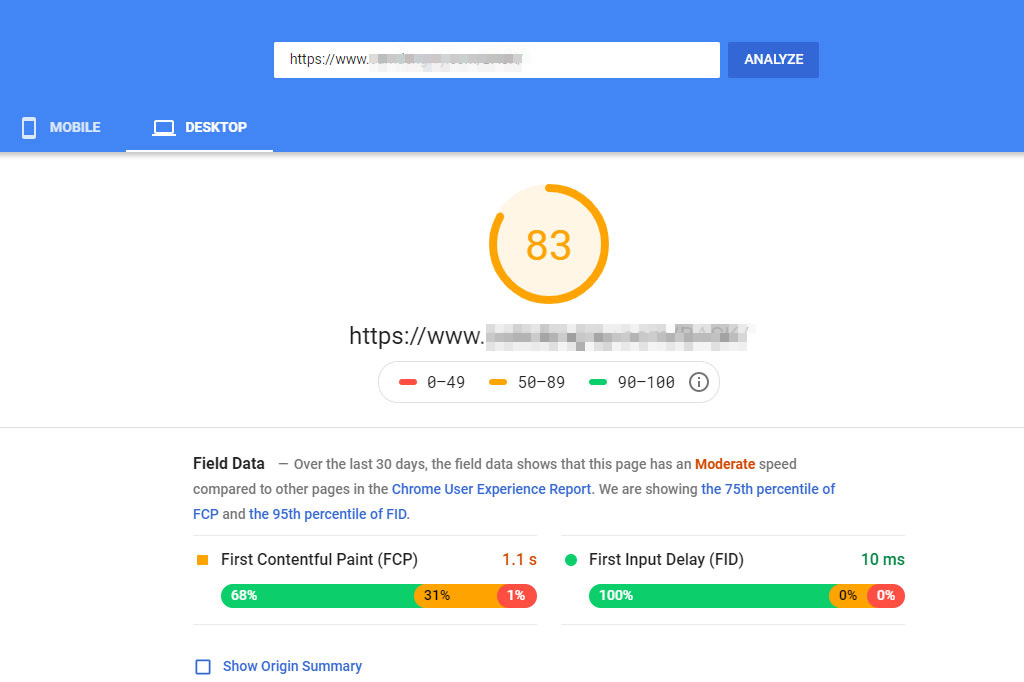 Site speed results from PageSpeed Insights